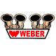 Calcomanía Externa de Vinyl WEBER
