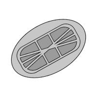 Tapones de Antena