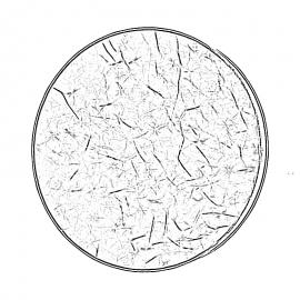 Monedas de Cabeza